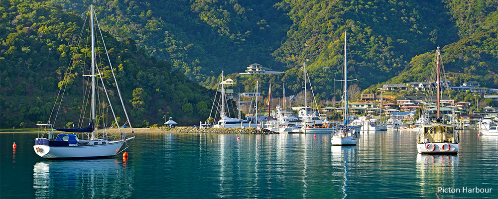 about-picton-4