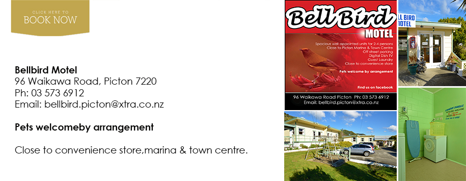 bellbird-vp-site-ad